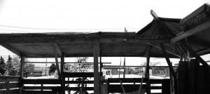 b&w-web-roof-panaroma
