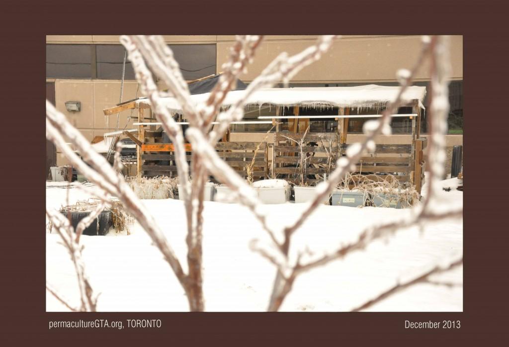 web2013-12-23-12