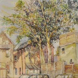 Lo.Lowell.MagnificientLanewayTree.watercolour.14x14.$670.Sub#2